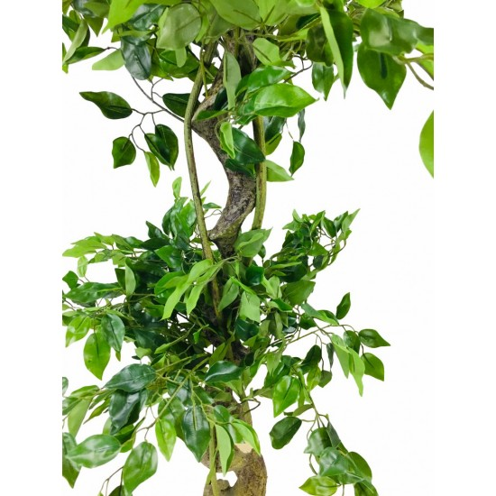 Artificial Ficus Tree With Twisted Trunk 145cm