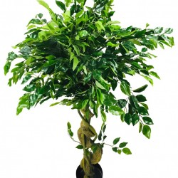 Artificial Ficus Tree With Twisted Trunk 137cm
