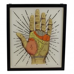 Decorative Lightbox, Palmistry Hand
