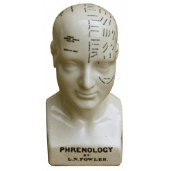 Medium Ceramic Phrenology Head 25cm
